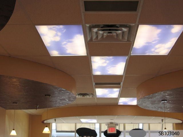 Custom Skylight Graphics