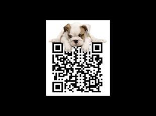 Unique QR Code with Puppy