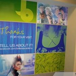 Wall Graphics & Murals