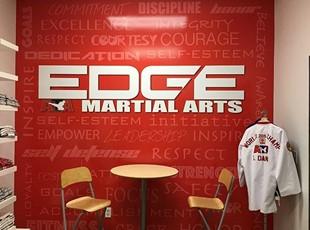 Martial Arts Wall Graphics