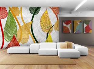 Wall Graphics and Art Canvases