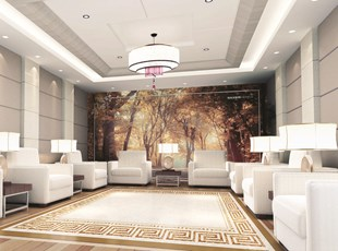Wall Graphics for Hotel Lobby