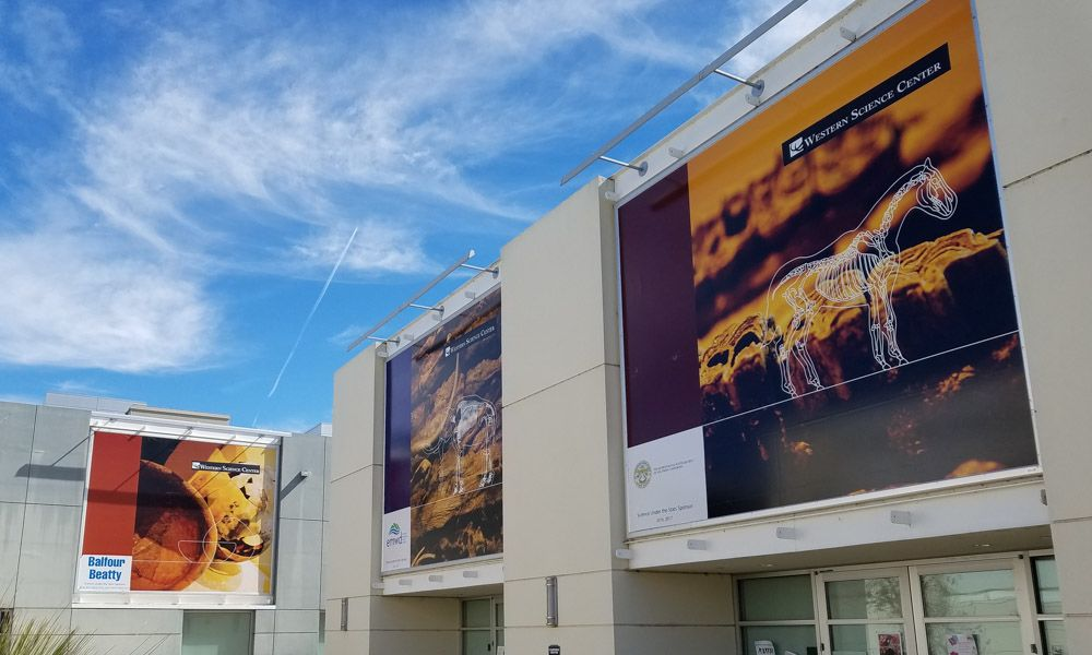 Environmental banners for museum