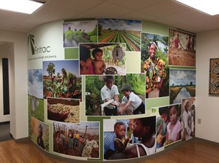 Fintrac Wall Graphics in Washington DC