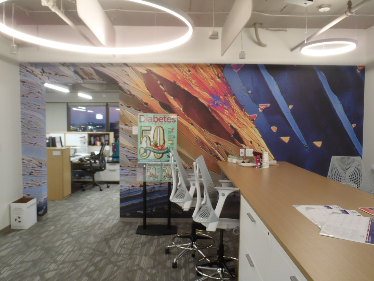 Custom Wall Murals Wallpapers Signs by Tomorrow Rockville