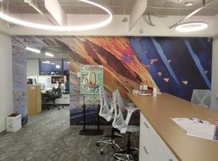 Custom Wall Mural Graphics for American Diabetes Association in VA