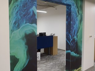 Environmental Wall Graphics