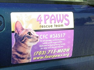 Vehicle Magnet for 4PAWS in Merrifield, VA.