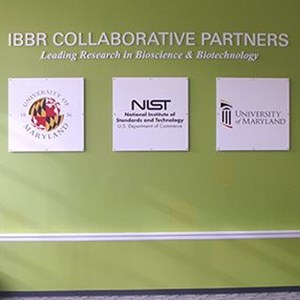 IBBR Collaborative Partners Wall Panels