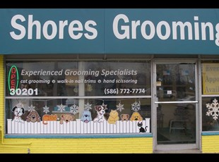 Dog Grooming Window