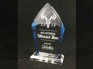 Peak Acrylic Award