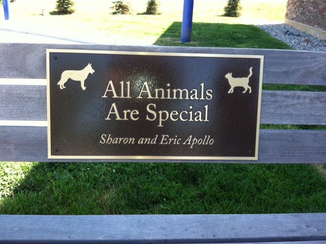 Humane Society Bench Bronze Plaque