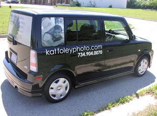 Vinyl Lettering & Perforated Window Film