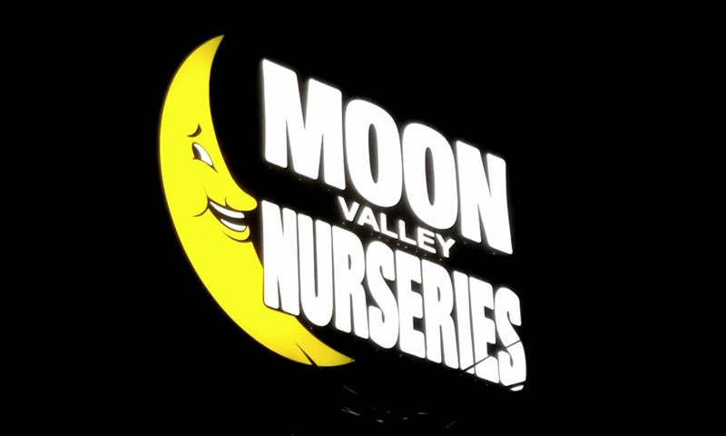dimensional lettering, logo, illuminated, light, moon valley nurseries, fallbrook, hollywood, huntington beach, riverside, chino, signs by tomorrow, murrieta, inland valley, southern california
