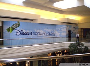 Disney Retail Wall Wrap