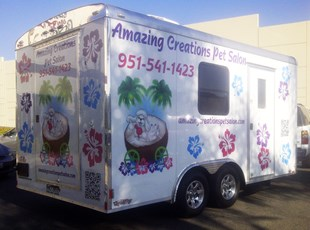 Amazing Creations Pet Salon