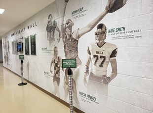 Wall Covering | Schools & Colleges | Murrieta