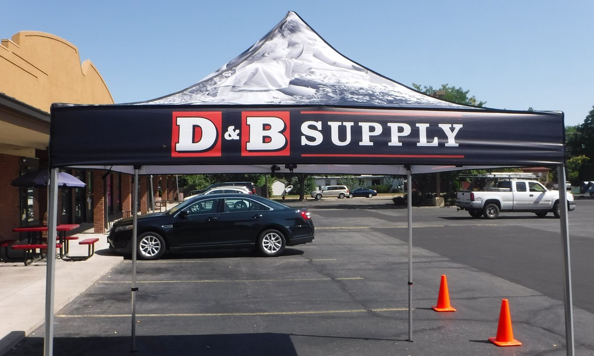 D and b supply