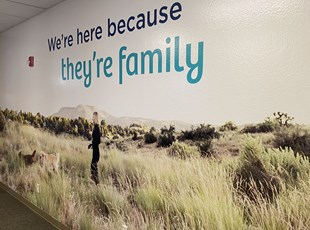 Wall Graphics & Murals | Indoor Vinyl Lettering & Graphics | Healthcare | Boise, Idaho