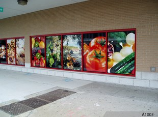 Full Color Window Graphics, Chicago, IL
