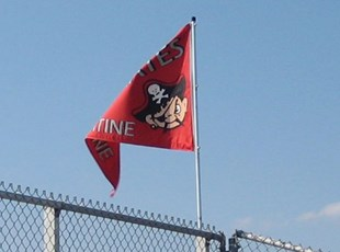 Palatine High School Mascot Flag