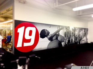 Large Wall Mural installed at Fitness 19 - Arlington Heights, IL