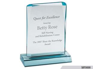 Excellence Acrylic Award