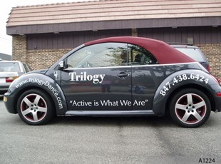 Vehicle Lettering, Volkswagen Beetle