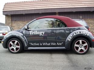 Vehicle Lettering, Volkswagen Beetle