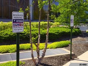 custom parking signs for Astellas Northfield and Astellas Skokie