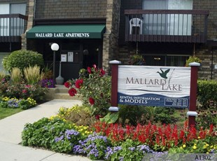 Call us to find out about the difference between Routed or Sandblasted HDU Signs and Sandblasted Redwood Signs - Mallard Lake Apartments, Wheeling, IL