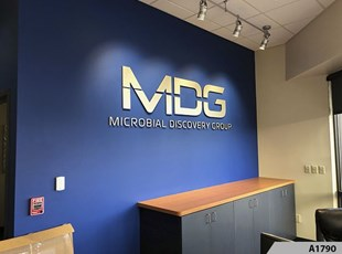 3D Letters for Lobby Wall, popular Office Signage