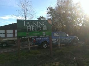 Talking Fields