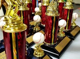 Acrylic Awards   Non-Profit