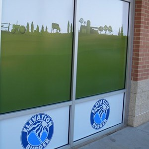 Exterior Window Graphics
