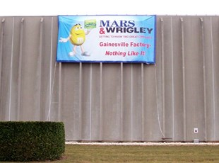 Oversized Banner for Wrigley's