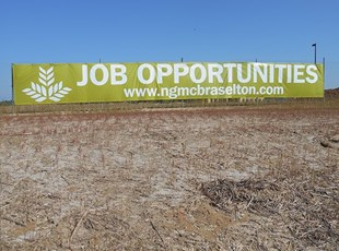 NGPG Jobs banner